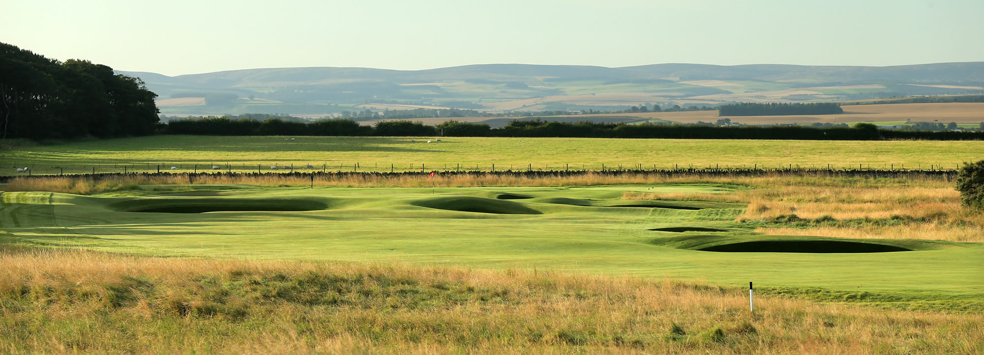 Muirfield 8th Green